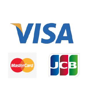 Download Cara Bayar Melalui Visa